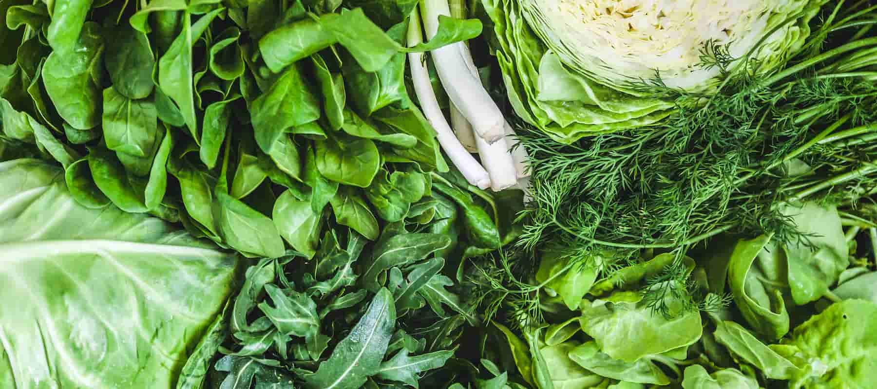 Food that improve vision